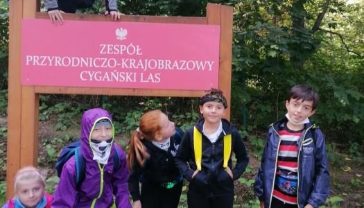 Obrazek newsa WYCIECZKA Cygański Las- Bystra- Mikuszowice